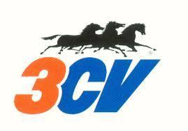 3CV 0250332 - Juego Fusibles Enchufables 3CV 6Ud